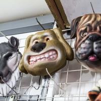 Montana Family Market_dog masks