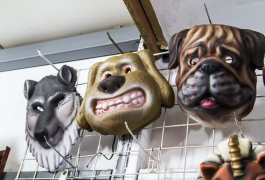 Montana Family Market_dog masks