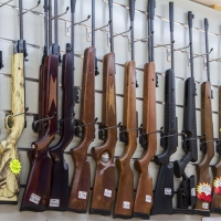 Montana Family Market_Blades and Triggers_airsoft rifles