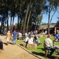 Pretoria market on sunday