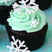 Montana Family Market_art programme_winter theme cupcake