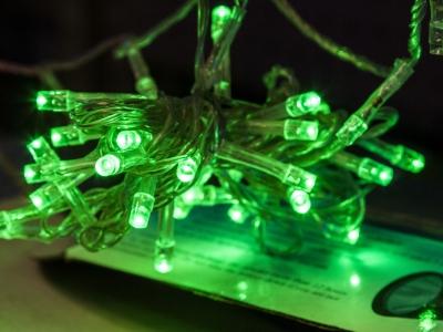 Montana Family Market_Bukhari Electronics_string of green fairy lights